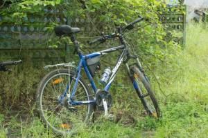 В Трубчевске полиция разыскала украденный у женщины велосипед