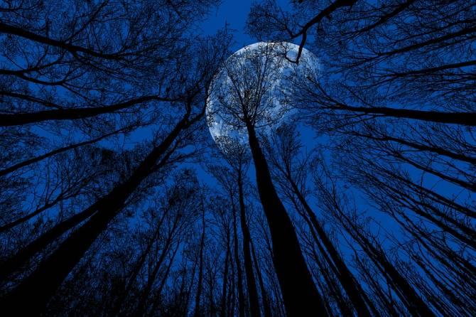 На Хэллоуин брянцы смогут увидеть Голубую Луну