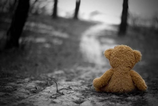 Под Брянском трагически погибла 14-летняя девочка
