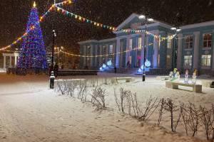 В Брянске возле ДК Горького установили новогоднюю ёлку