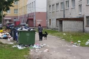 В Брянске начали ежедневно вывозить мусор возле БГТУ