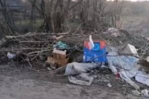В брянском поселке Глинищево назревает мусорный апокалипсис