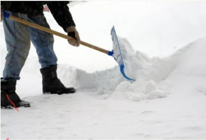 Жителей Белых Берегов позвали на расчистку территории храма