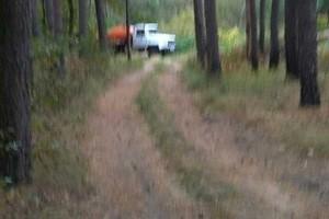 Ассенизаторская машина слила зловонную жижу в брянском лесу