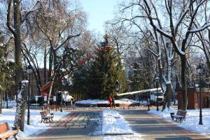 В Брянске начали наряжать елку в Круглом сквере