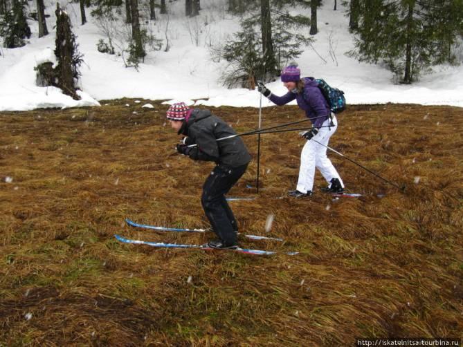 В Новозыбкове дождь отменил лыжные гонки