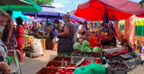 В Клинцах чиновники незаконно отказали организатору овощной ярмарки