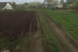 Жители Трубчевска пожаловались на перепахивающих дорогу огородников
