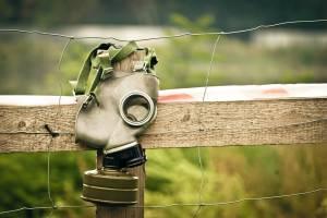 Брянцы сообщили о массовом отравлении у полей с «Мираторгом»