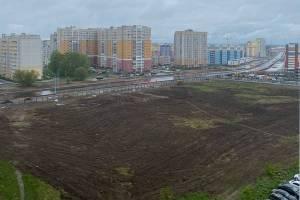 В центре Брянска заметили поле под посадку картошки