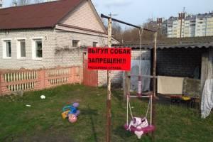 В Бежице предупредили об отраве для собак на детской площадке