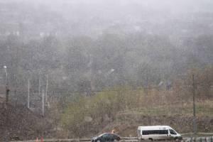 На Брянск в конце апреля обрушилась метель
