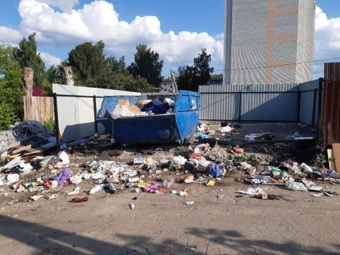 Под Брянском рядом с детской площадкой жители Супонево устроили свинарник