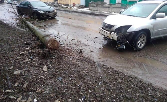 В Брянске на улице Костычева рухнул столб