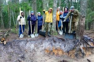 Заповедник «Брянский лес» пригласил волонтеров на уборку центральной усадьбы