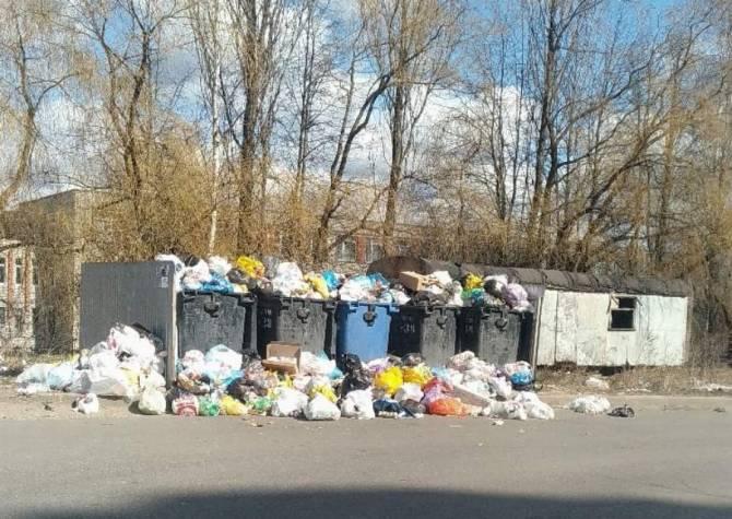 В Брянской области на треть выросло количество мусора