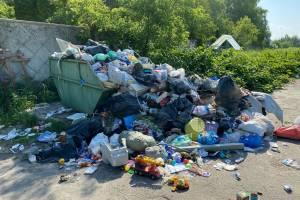 На кладбище брянского поселка Бежичи вернулся мусорный апокалипсис