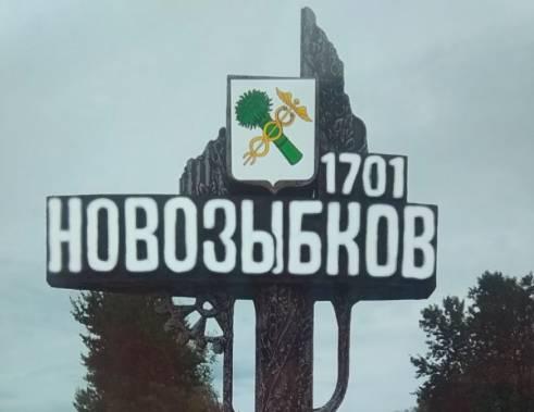 Жители Новозыбкова предложили властям сэкономить на освещении стелы