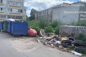 В Брянске «Спецавтопредприятие» накажут за свалку из покрышек