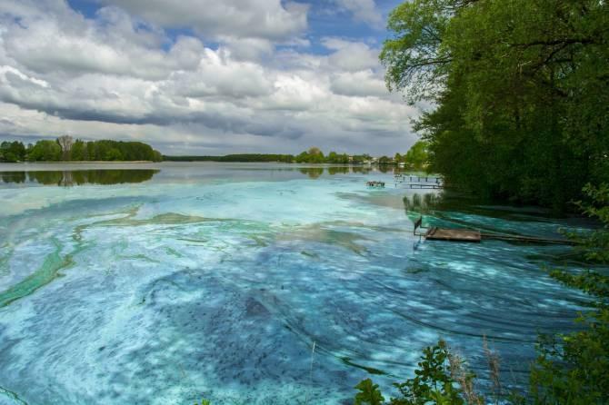 В брянском поселке Бытошь нашли вероятную причину загрязнения местного озера
