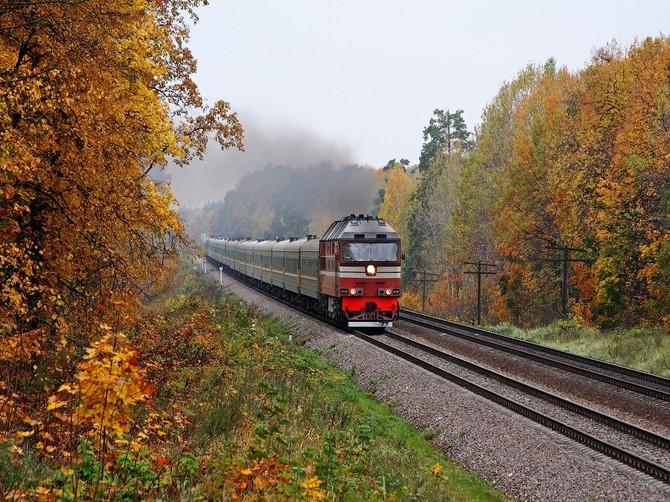 На Брянщине резко снизилось число несчастных случаев на железной дороге