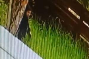 В Брянске сняли на видео похожего на маньяка мужчину