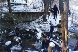 В Белых Берегах активисты построят новый мост