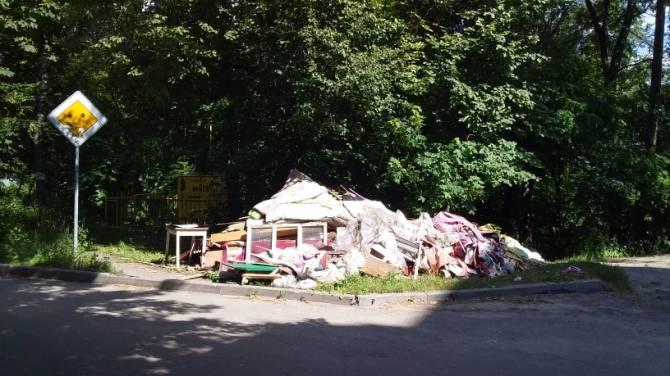В Брянске ищут виновника мусорной свалки в центре города