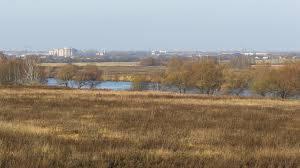 На Брянщине продали почти 100 га изъятых у нерадивых собственников земель