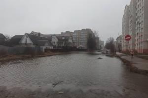 В Брянске освободилась ото льда знаменитая лужа на Медведева
