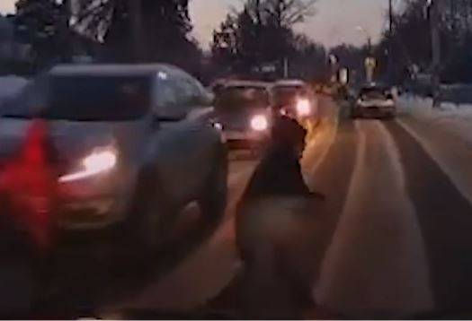 В Брянске сняли на видео аварию с участием 7-летнего школьника