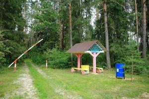 Брянские леса с 26 августа вновь откроют для посещения