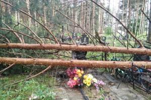 На кладбище в Ивановке рухнувшие деревья повредили памятники и ограды