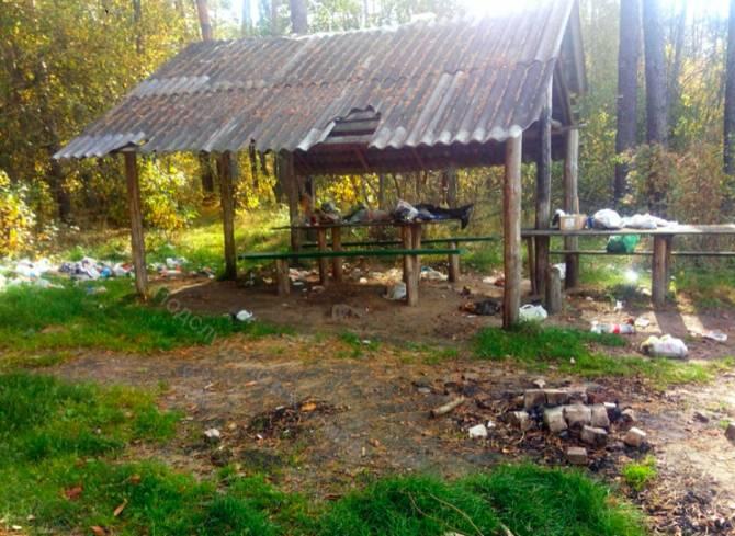 Под Климово шашлычники превратили место отдыха в свалку