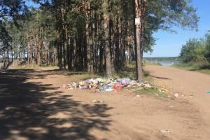 В Брянске свалки на озере Орлик продолжают разрастаться
