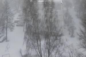 В Брянск вернулась зима со снегом