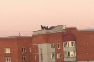 В Брянске молодёжь устроила шумные гулянки на крыше многоэтажки