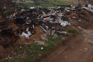 Огромную свалку в Бежице сняли на фото в Брянске