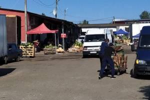 Силовики устроили крупную облаву на овощебазе в Брянске