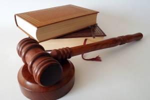 Брянский военный спилил три дуба и попал под суд