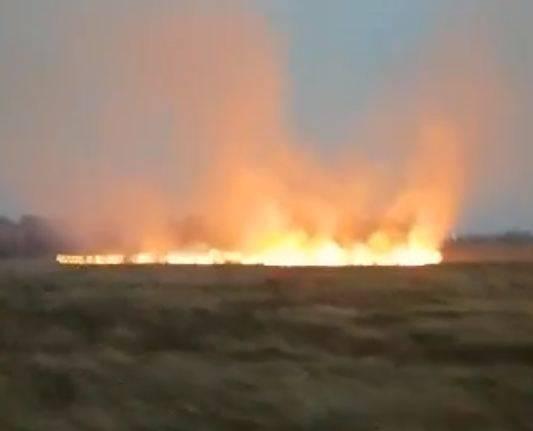 В Брянске сняли на видео горящее поле возле кладбища в Чайковичах