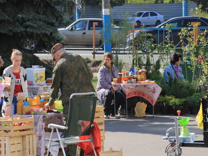 На Брянщине снизить цены на овощи помогли ярмарки выходного дня
