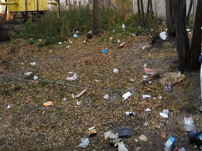 В Брянске блоггер Виткевич снял на видео мусорную красоту возле БГТУ