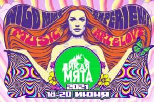Группа КИНО выступит на фестивале «Дикая Мята»