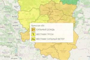 В Брянске объявили оранжевый уровень погодной опасности