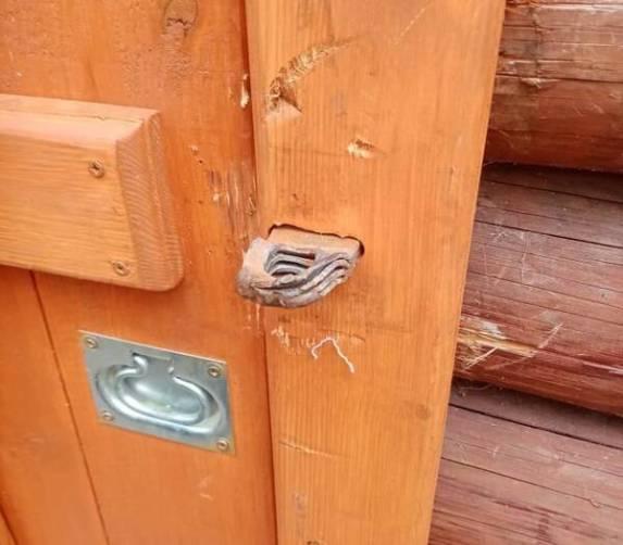 Под Новозыбковом вандалы сломали амбарный замок на кринице в Синявке