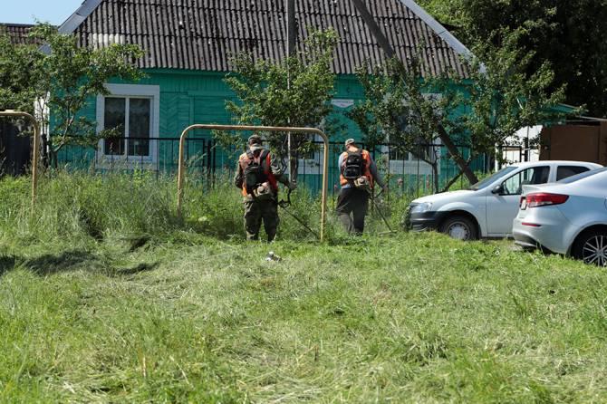 В Брянске покосили более 2 млн квадратных метров газонов