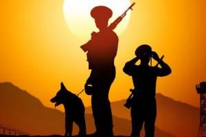 Брянские пограничники отмечают профессиональный праздник