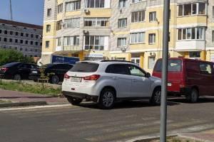 Жители Брянска пристыдили автохама