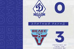 Брянское «Динамо» на своём поле проиграло московскому «Велесу»